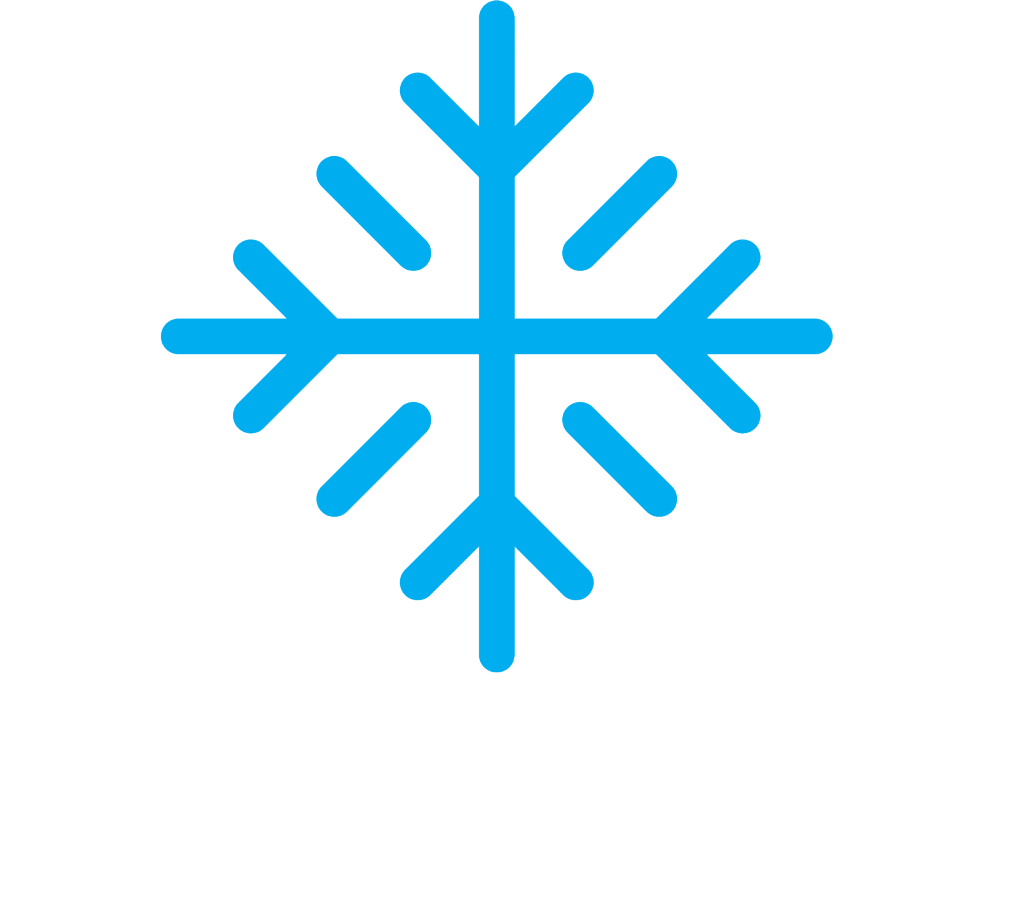Paradealer Air Vuisa Snowflake