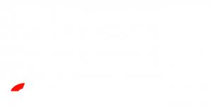 ozone logo weiß